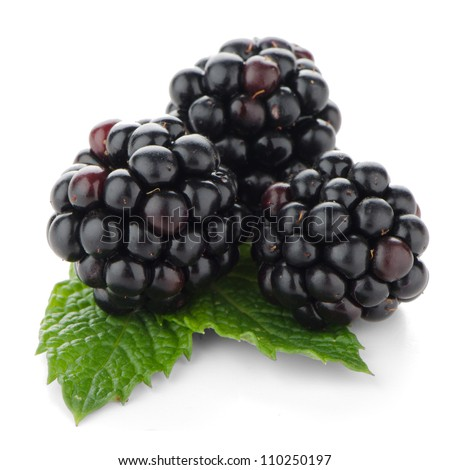 Fresh berry blackberry with green mint leaves isolated on white background. - stock photo