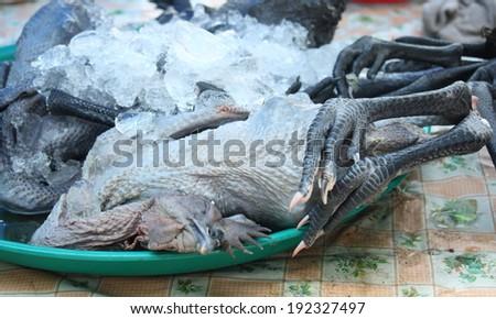 fresh black chicken in local market - stock photo