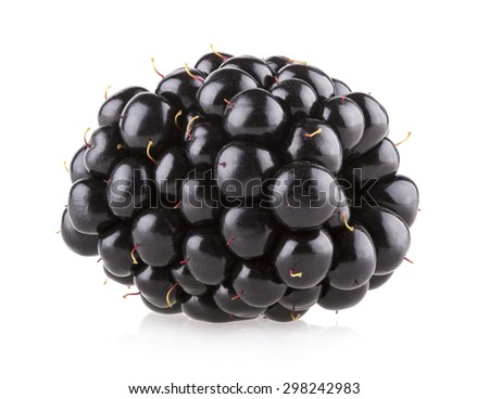 fresh blackberry isolated on white background - stock photo