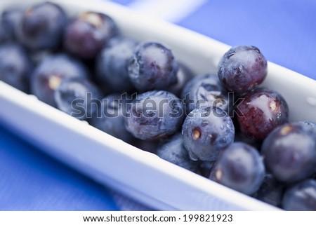 Fresh blueberries in bowl - stock photo