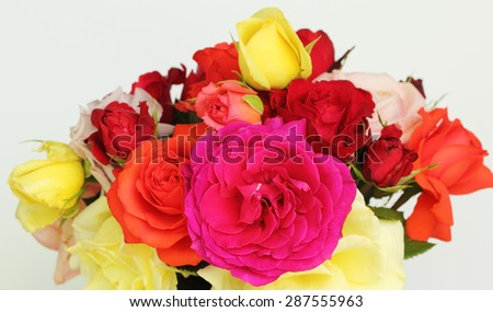 Fresh bouquet of multicolored roses - stock photo
