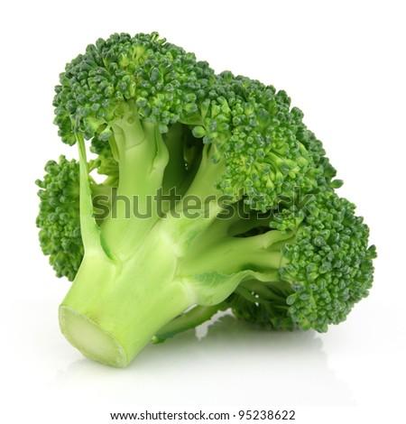 Fresh broccoli in closeup - stock photo