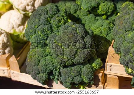 Fresh Broccoli ready for sale on the farmers market. - stock photo