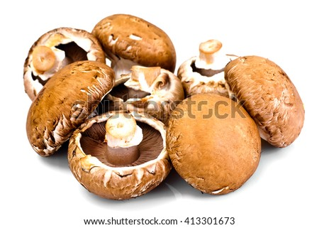 Fresh Brown Mushrooms Isolated on White Background Studio Photo - stock photo