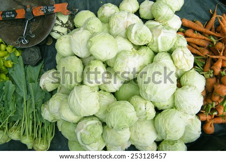 Fresh cabbages in the vegetable market stall. - stock photo