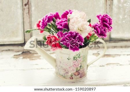 Fresh carnations in watering can against old window. Postcard. - stock photo