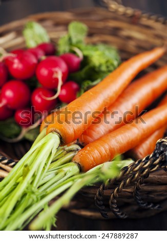 Fresh carrots and radish in the basket. Selective focus.Shallow depth of field - stock photo
