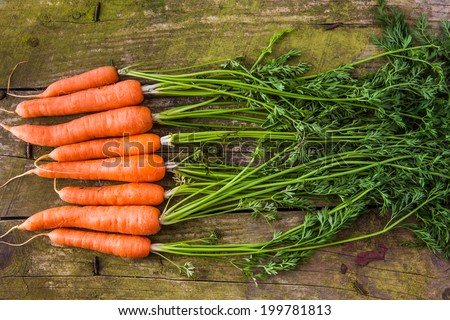 Fresh carrots with leaves on a rustic background - stock photo