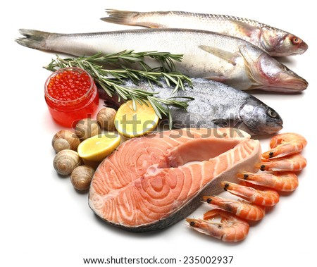 Fresh catch of fish and other seafood isolated on white - stock photo