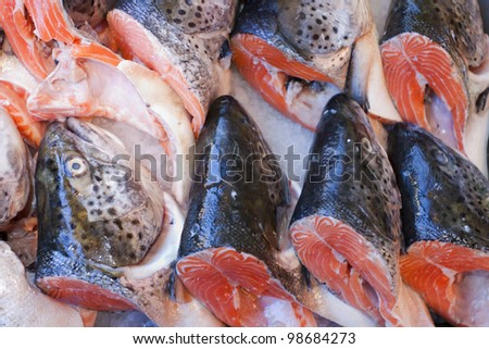 Fresh catch of fish at the seafood market. - stock photo