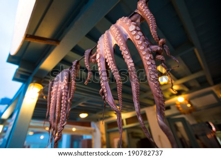 Fresh Caught Octopi Drying - Naxos, Greece - stock photo