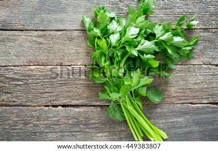 fresh celery leafs on wooden surface - stock photo