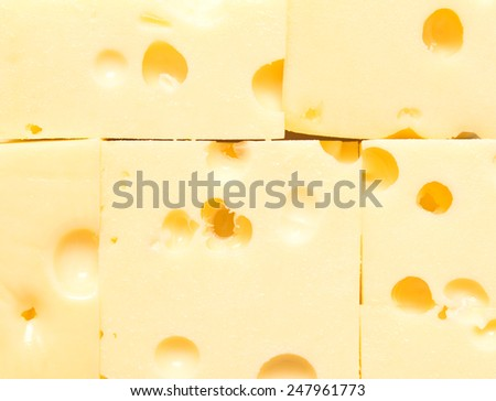 fresh cheese background - stock photo