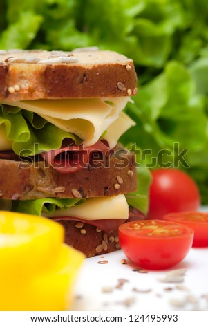 Fresh cheese sandwich with vegetables - stock photo