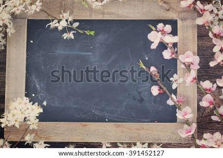 fresh cherry twigs with fresh pink  blooming  flowers  on blak board background with copy space, retro toned - stock photo