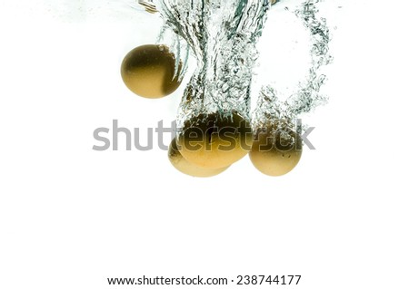 Fresh chicken eggs falling in water splash, isolated on white background - stock photo