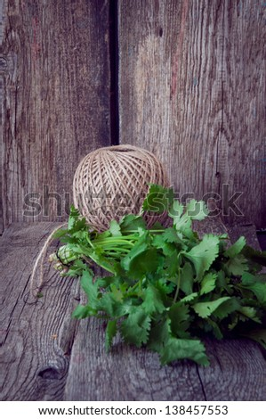 fresh cilantro on a wooden table - stock photo
