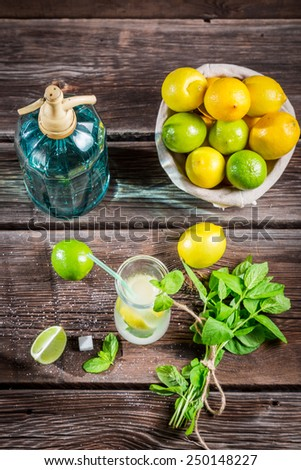 Fresh citrus fruits for cold drink - stock photo