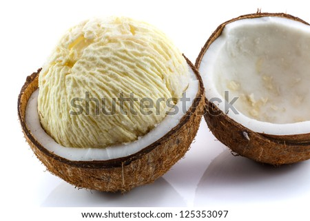 Fresh Coconut sprout - stock photo