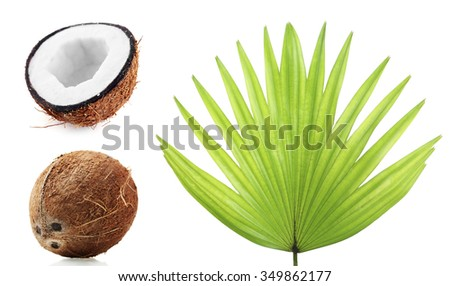 Fresh coconuts with palm leaf, isolated  on white - stock photo