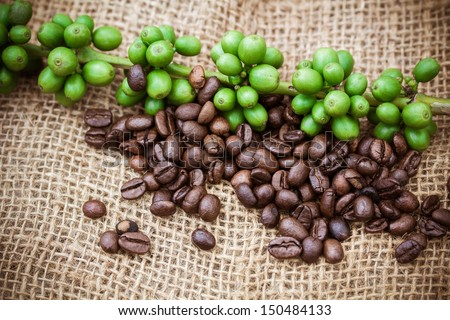 Fresh coffee beans on canvas texture background, Macro close-up for design work - stock photo