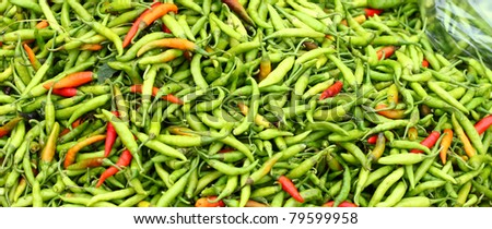 Fresh Colorful chillies at Monsoon market - stock photo