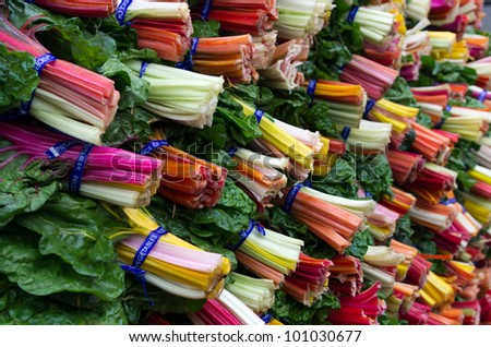 Fresh colorful swiss chard on display at the farmers market - stock photo