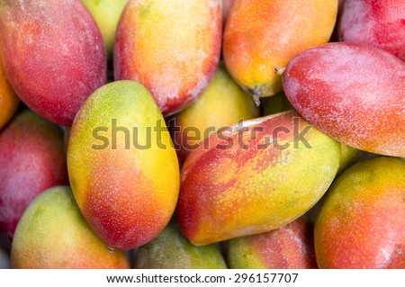Fresh colorful tropical mangoes on display at outdoor farmers market in Rio de Janeiro Brazil  - stock photo