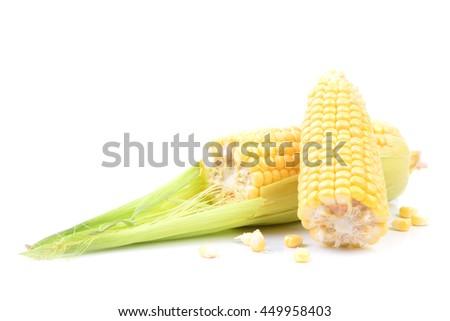Fresh corn - stock photo