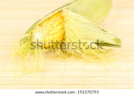 Fresh corn cob on bamboo mat - stock photo