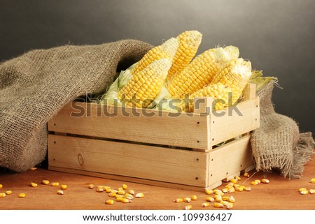 fresh corn in box, on wooden table, on grey background - stock photo