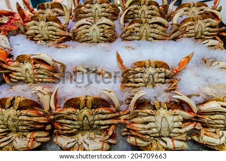 Fresh Crab Being Sold at the Open Public Market - stock photo