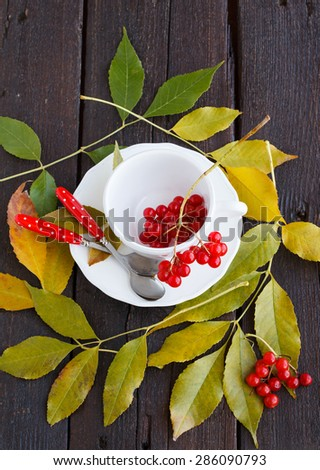 Fresh cranberries in a white Cup, autumn leaves.selective focus - stock photo