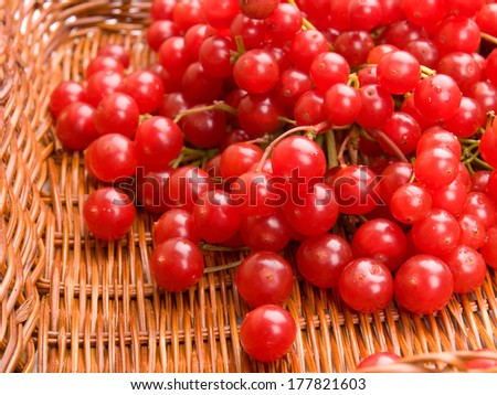 Fresh cranberries in basket - stock photo