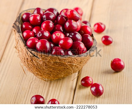 Fresh Cranberries  on a wooden background. Selective focus - stock photo