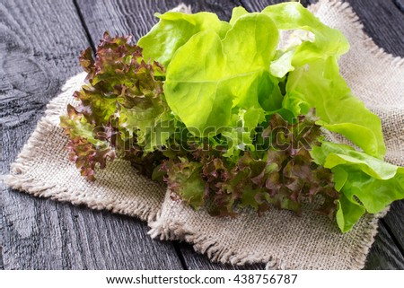 Fresh crispy lettuce and Lollo Rossa on sacking. The source of vitamins and minerals, detox, diet, health or vegetarian food concept - stock photo