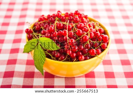 Fresh currant fruit in yellow plate. Morning breakfast background. - stock photo
