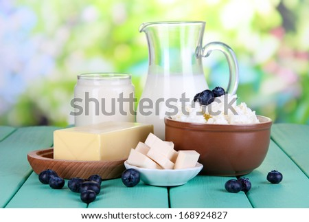 Fresh dairy products with blueberry on wooden table on natural background - stock photo