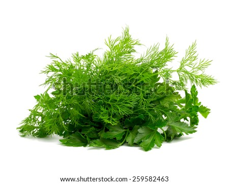 fresh dill and parsley - stock photo