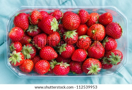 Fresh eco grown strawberries in plastic basket. They are smaller than other, but not genetically or chemically treated. - stock photo