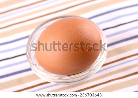 fresh egg - stock photo