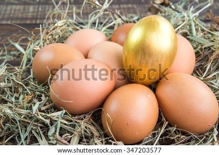 Fresh Egg  and golden eggs on wooden background. - stock photo