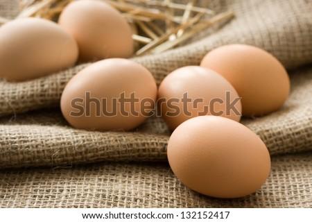 Fresh eggs from farm - stock photo