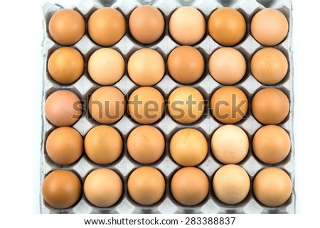 Fresh Eggs in the package isolated on white background - stock photo
