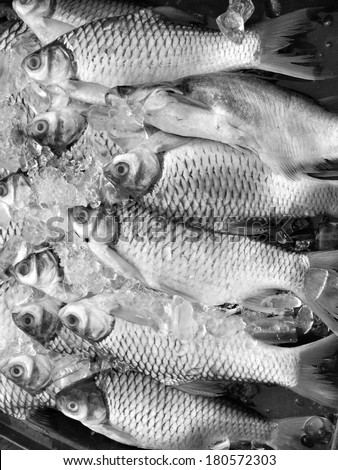 Fresh fish at asia market - stock photo