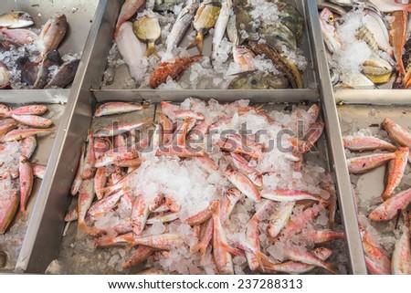Fresh fish displayed for sale on a Greek island Kalymnos - stock photo