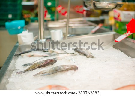 Fresh fish lies on table with ice in supermarket - stock photo