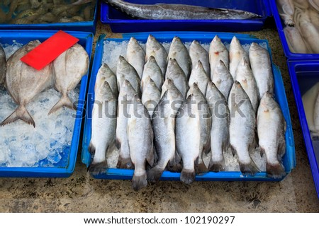 Fresh fishes in the market - stock photo