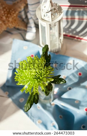 Fresh flower and a towel on wooden floor, overview shot, shallow focus on the flower. Marine holiday and relaxation concept - stock photo