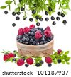 fresh forest berries : blueberries , raspberries in the basket on white - stock photo